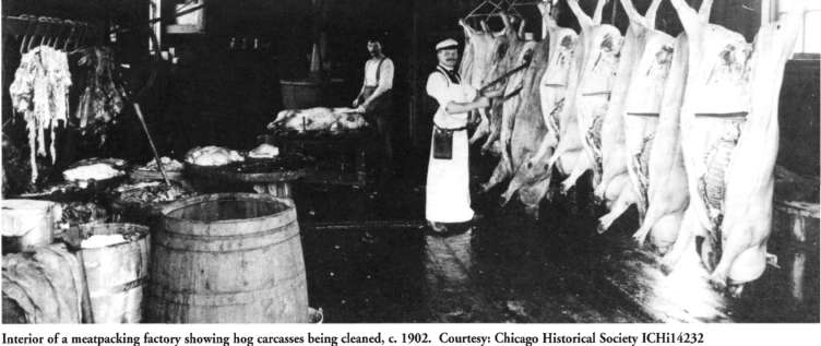 chicago meat packing book